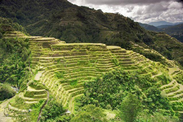 I terrazzamenti più spettacolari del mondo