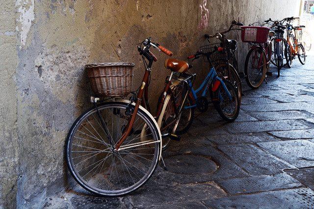 Lucca. Foto di Pug Girl