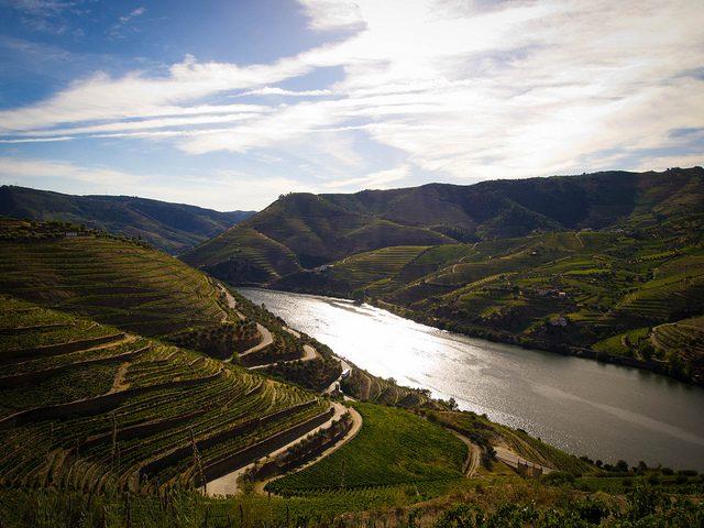 Valle del Douro – Foto di Guillermo Torres