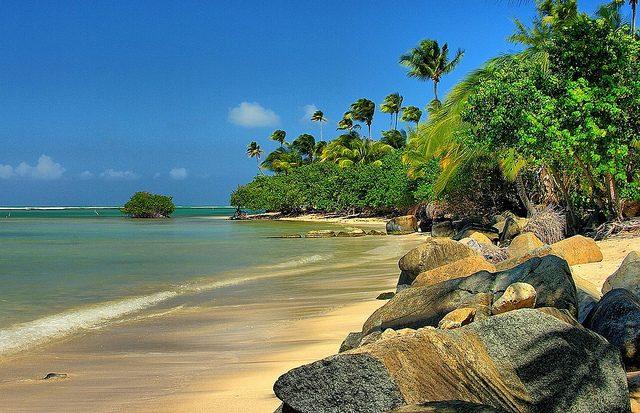 Porto Rico. Foto di Ron Reing