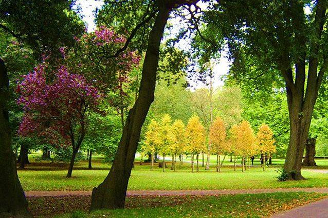 Panoramica del Bute Park di Cardiff (Wikipedia).