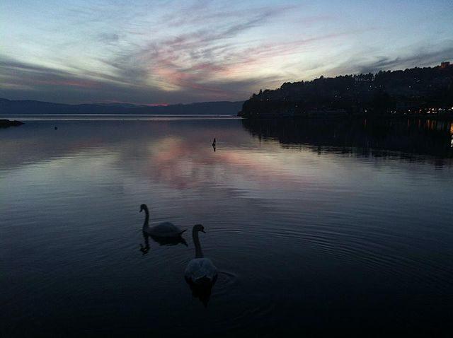 Lago di Ocrida – Foto Wikimedia Commons