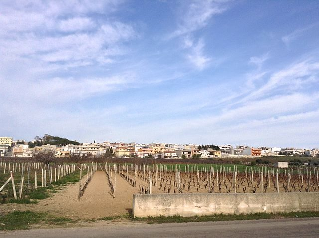 San Marzano di San Giuseppe – Foto Wikimedia Commons