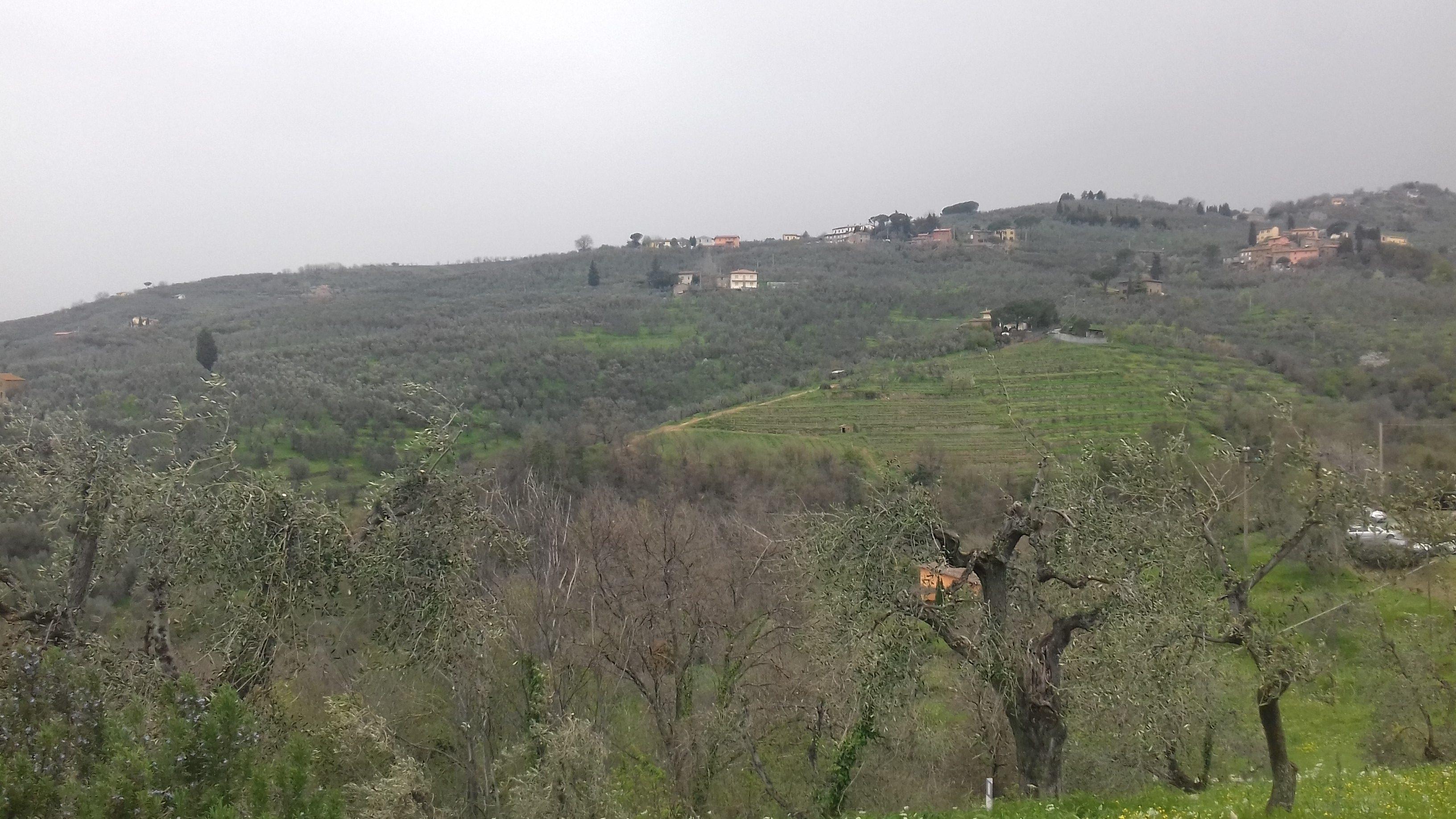 """Il paesaggio dalla """"strada verde"""" che conduce da Vinci ad Anchiano"""