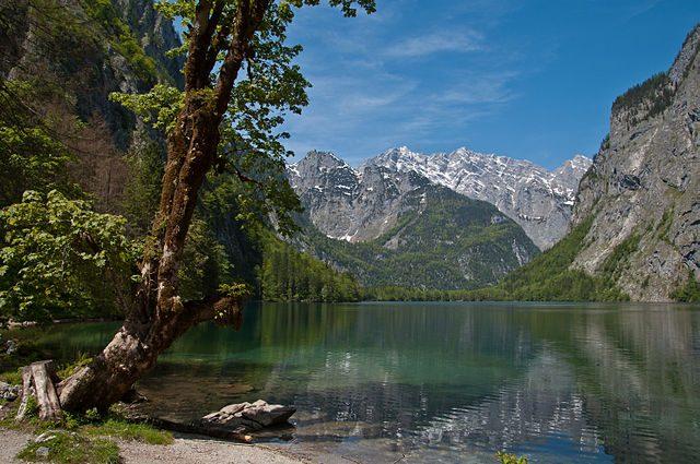 Obersee – Foto Wikimedia Commons