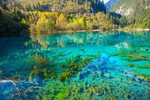 Lago dei Cinque Fiori – Foto di Jean–Marie Hullot