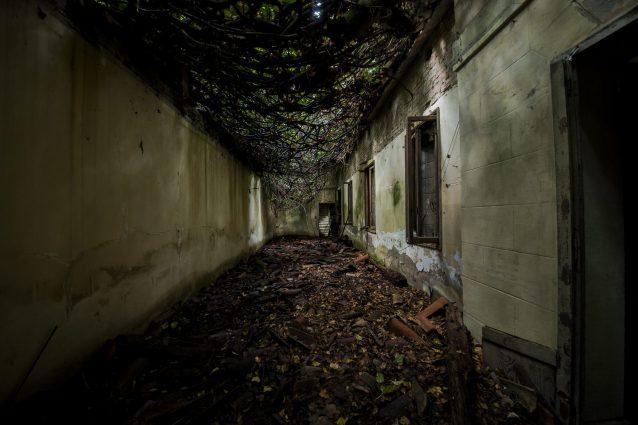 Ospedale psichiatrico di Poveglia.