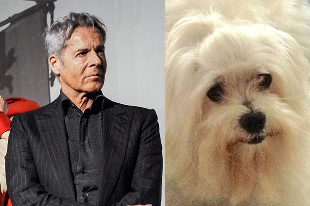 Claudio Baglioni piange la morte del cane: 'Ho il senso di colpa di essere sopravvissuto'