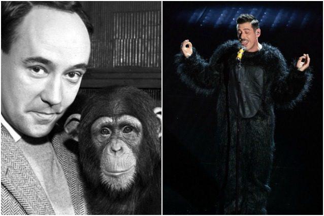 """Desmond Morris, autore de 'La scimmia nuda': """"Gabbani? Come Bob Dylan e John Lennon"""""""