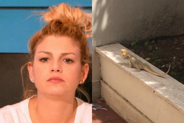 Iguana nel giardino di Emma Marrone, la cantante chiama il 113