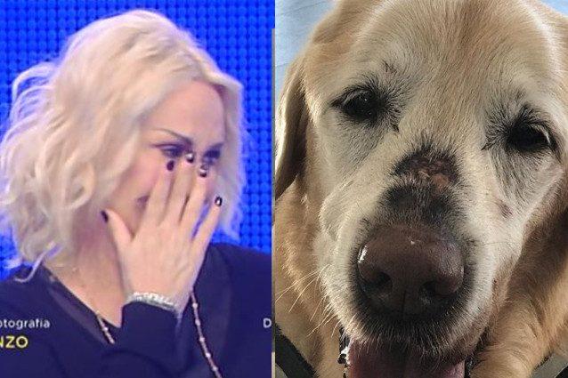 """Antonella Clerici piange in diretta per la morte del cane Oliver: """"Mi manca tanto"""""""