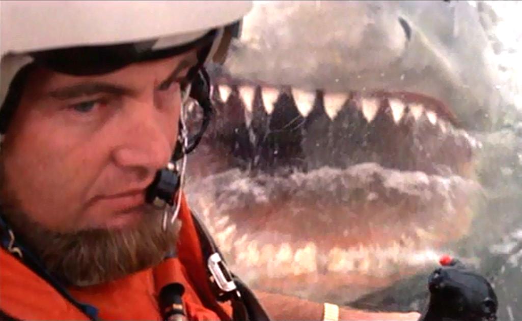 Elicottero Squalo : Cose de lo squalo che ancora non sapevate