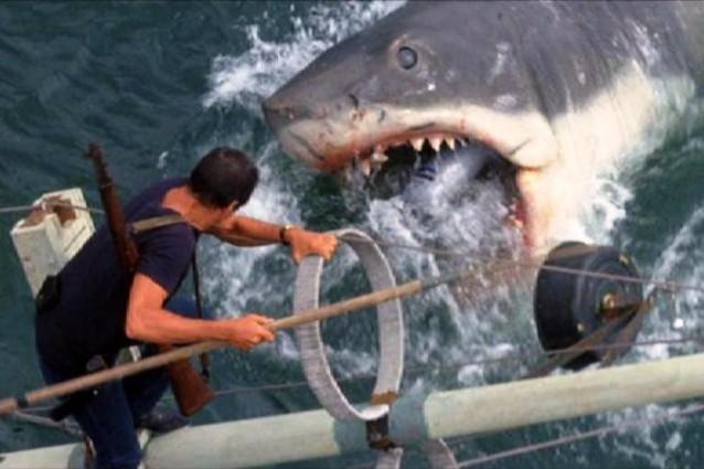 """Le 10 cose de """"Lo squalo"""" che ancora non sapevate"""