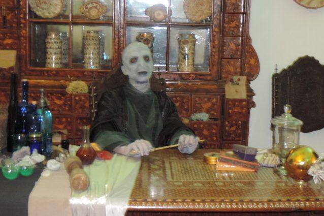 Voldemortalla floridiana