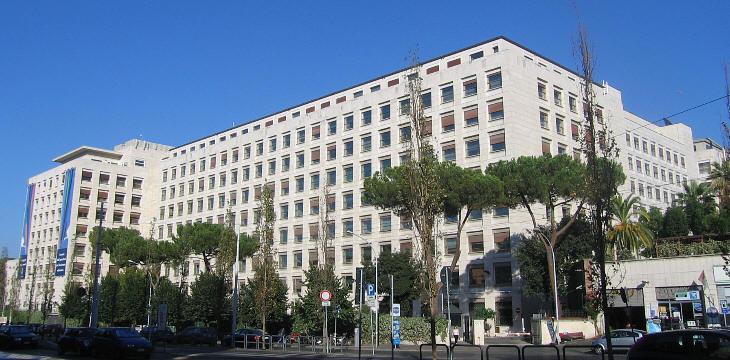 Allarme bomba alla sede fao di roma unit cinofile nel - Allarme bomba porta di roma ...