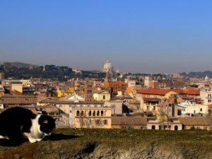 """Meteo Roma weekend 10-11 giugno, sole e temperature alte: arriva """"Giuda"""""""