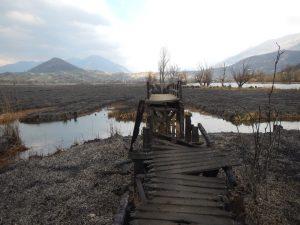 Un incendio doloso devasta la Riserva Naturale del lago di Posta Fibreno (FOTO)