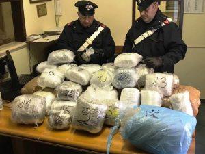 100 chili di marijuana in camera da letto: arrestato 20enne albanese
