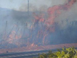 Ferma la ferrovia tra Bracciano e Anguillara a causa di un incendio: ritardi e disagi