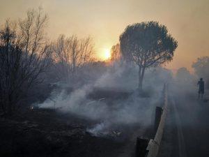 Ostia, in fiamme anche la pineta di Procoio: denunciato un piromane