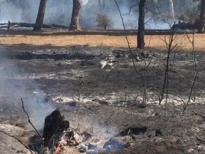 Incendi, nel Lazio bruciati 5.213 ettari nel 2017: superficie pari a 7.500 campi da calcio
