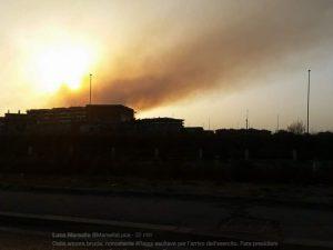 Castel Fusano brucia ancora (nonostante l'esercito): nuovo incendio all'alba