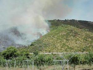 Incendio alla porte di Latina (Vigili del Fuoco).