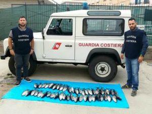 Multe salate a tre pescatori di tonno rosso a Gaeta e Formia
