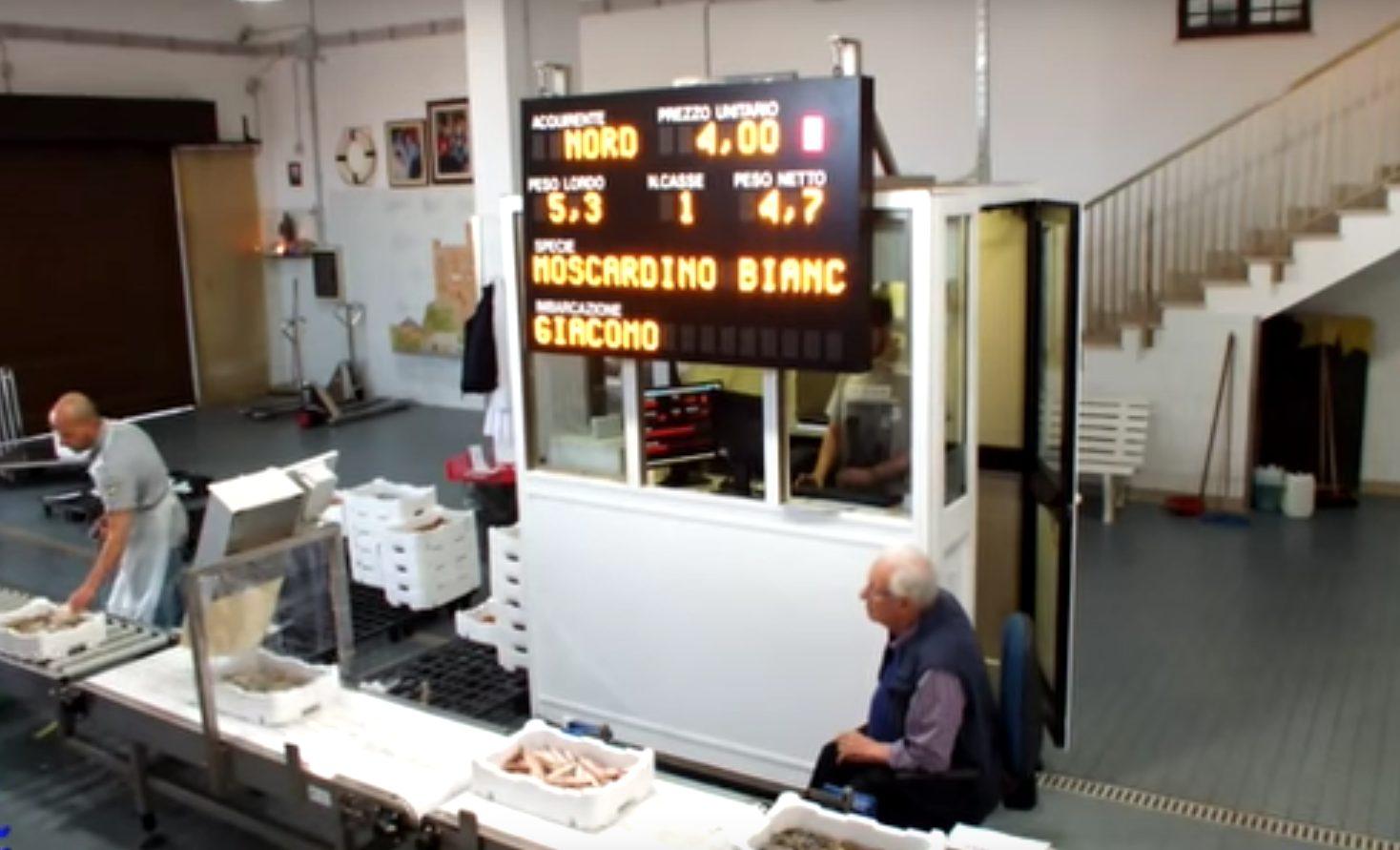 Come funziona l'asta del pesce a FIumicino. Seduto si intravede Giovanni Istinto