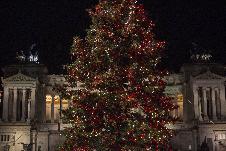 Albero Di Natale Roma.Altro Che Spelacchio Quest Anno L Albero Di Natale Di Roma E Meraviglioso