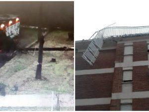 Danni maltempo a Roma: albero crolla su scuola, si staccano