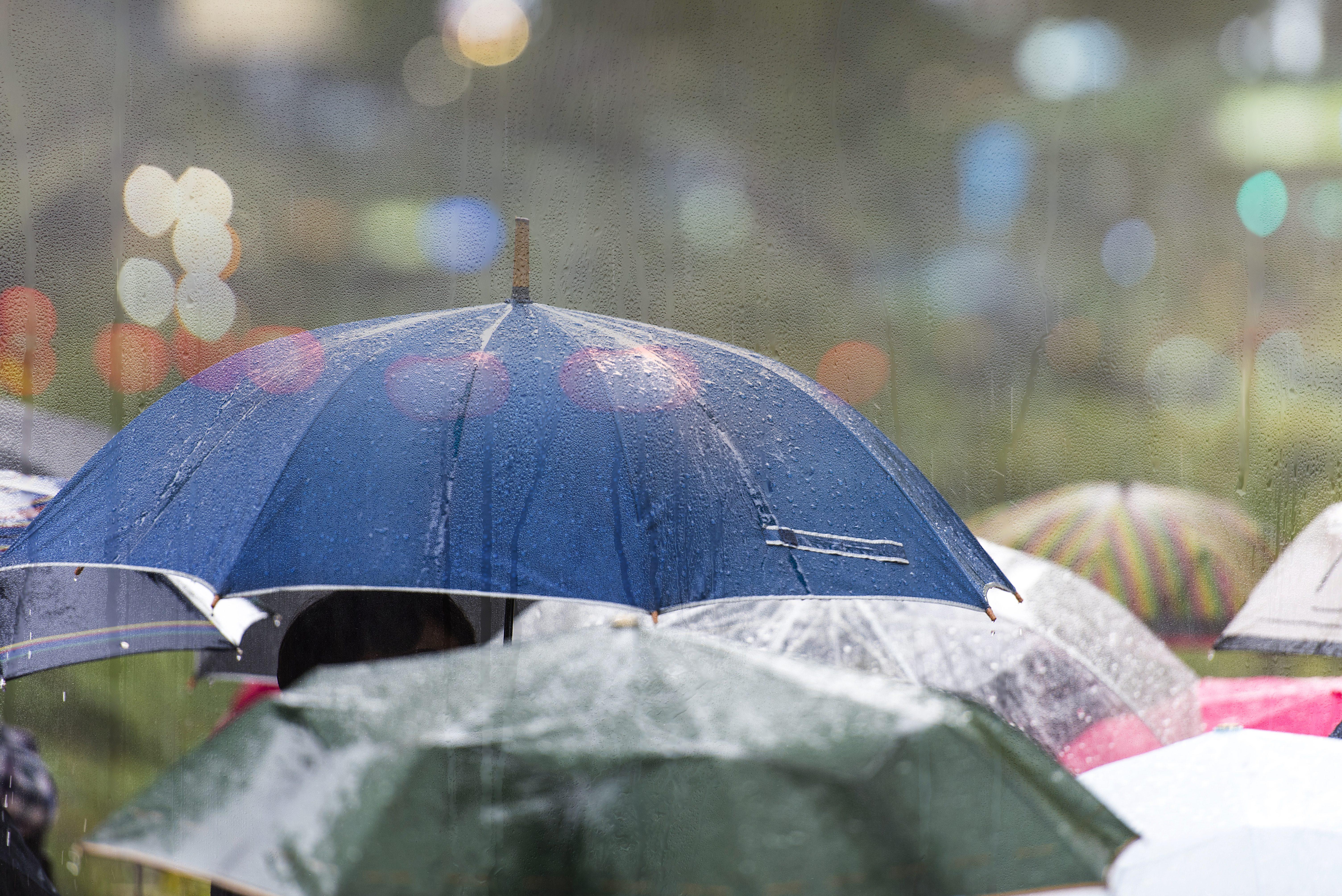 Previsioni meteo Roma 30 e 31 maggio: weekend di pioggia e ...