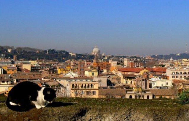 Previsioni meteo Roma 15 e 16 febbraio    weekend di sole    temperature in aumento