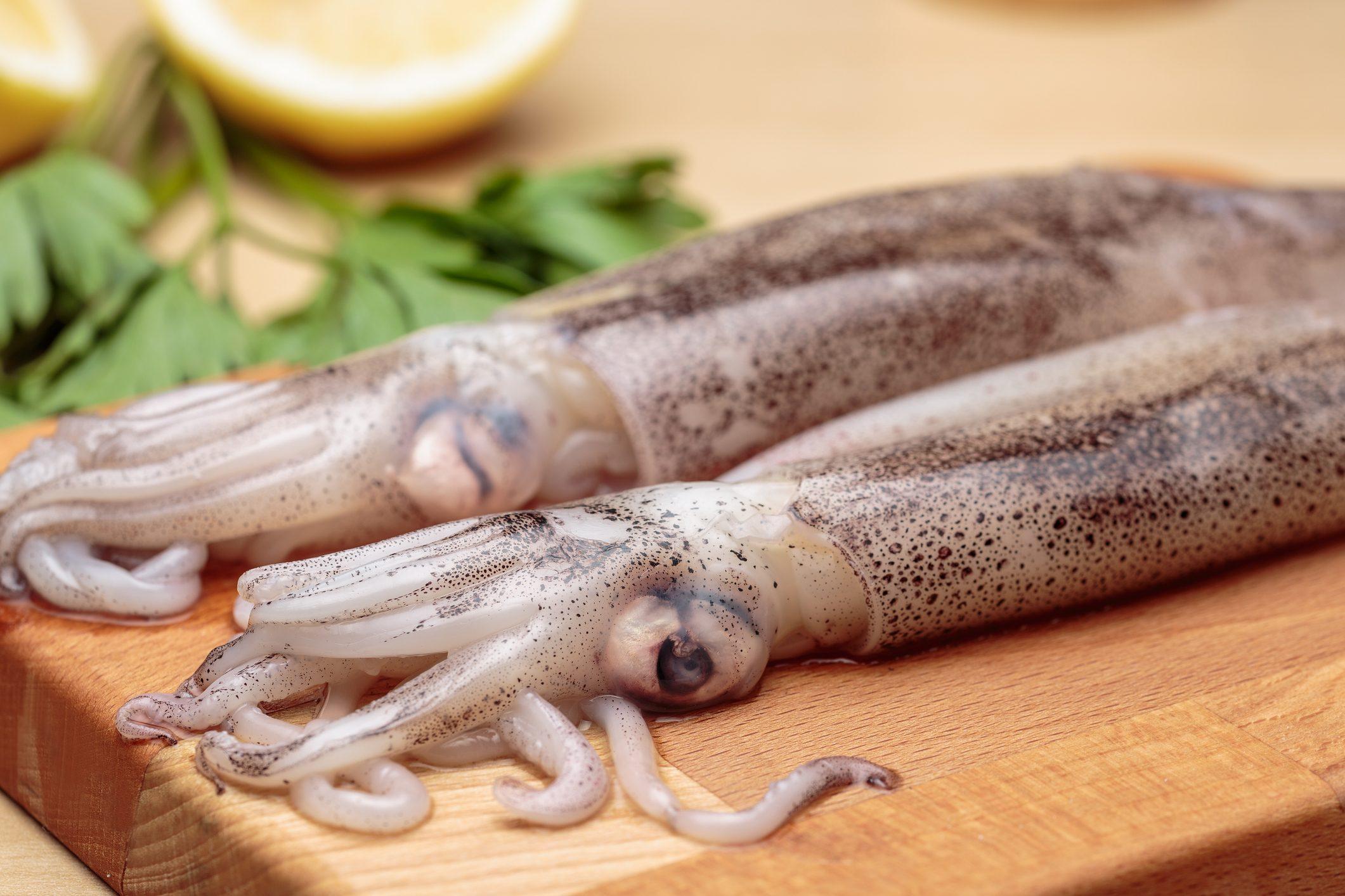 cuttlefish-ink