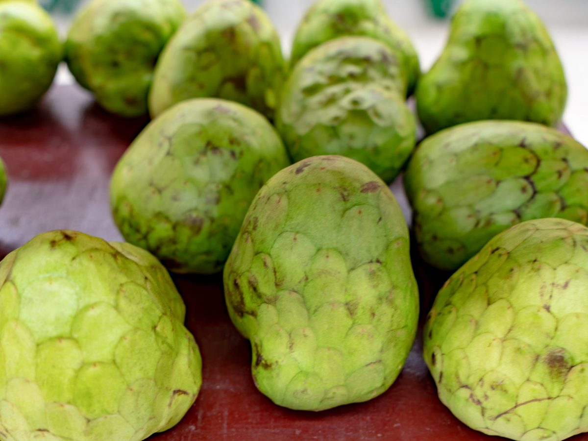 Benefits of Custard Apple During Pregnancy | Cookist.com
