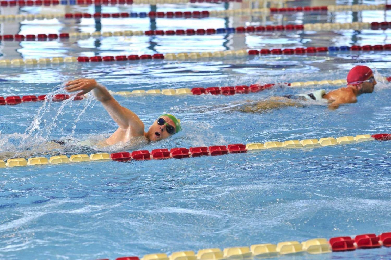 Milano piscine comunali prese d 39 assalto ma alla cozzi ci sono scarafaggi e vermi - Milano sport piscine ...
