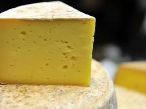 Latte contaminato da sostanze cancerogene: 14 stalle non a norma nel Bresciano