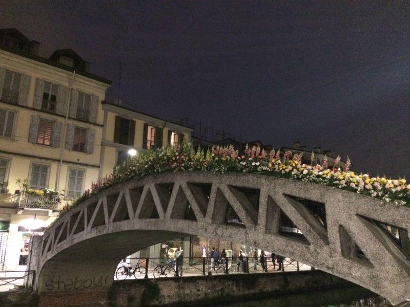 Milano torna il mercatino dei fiori sul naviglio grande for Il mercatino milano