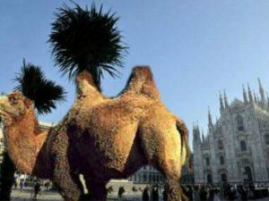 Palme in piazza Duomo (Fotomontaggio di @flabel82 su Twitter)