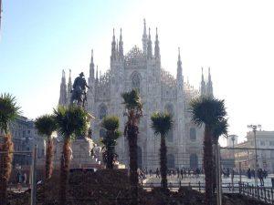 Piantate le prime palme in piazza Duomo: il nuovo look esotico prende forma