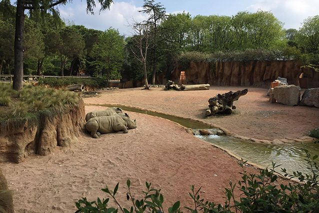 """Panoramica del Parco Faunistico """"Le Cornelle"""" (Facebook)."""
