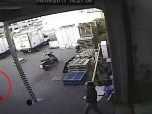 La tentata rapina a Settimo Milanese: nel tondo, uno dei rapinatori che spara verso un dipendente della ditta