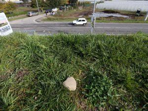 Il luogo da cui è partito il sasso che ha sfondato il parabrezza dell'auto (LaPresse)