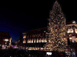 Acceso l'albero di Natale in piazza Duomo: è alto 30 metri e addobbato con 100.000 led