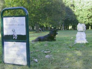 Un'area cani del Comune di Milano