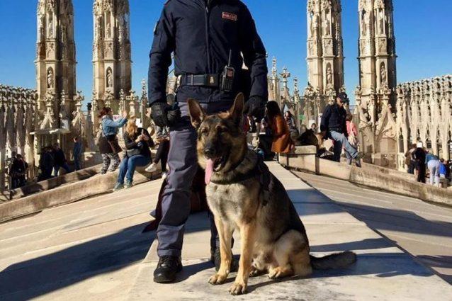 Milano, pusher scappa a controllo degli agenti nel parco Sem