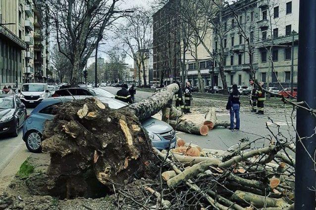 Milano, forti raffiche di vento si abbattono sulla città: al