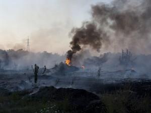 Terra dei Fuochi, nel 2016 roghi tossici in calo del 70%