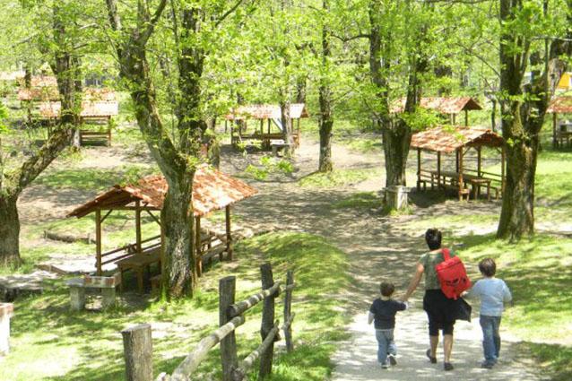 Picnic a un 39 ora da napoli 10 parchi per rilassarsi - Area tavoli picnic barbecue roma ...