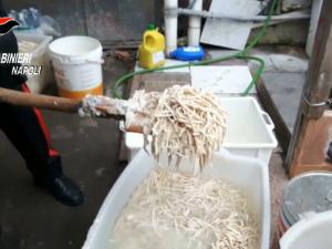 pasta-cinese